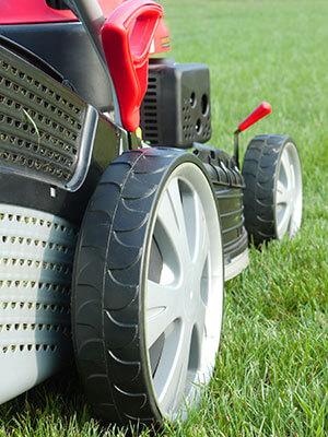 Omni Land Care Inc Lawn Care